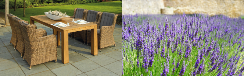 outdoor dining and lavender